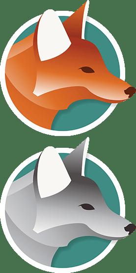 Lees meer over de Coyote's