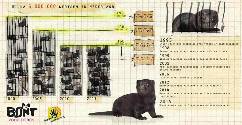 infographic_bontindustrie